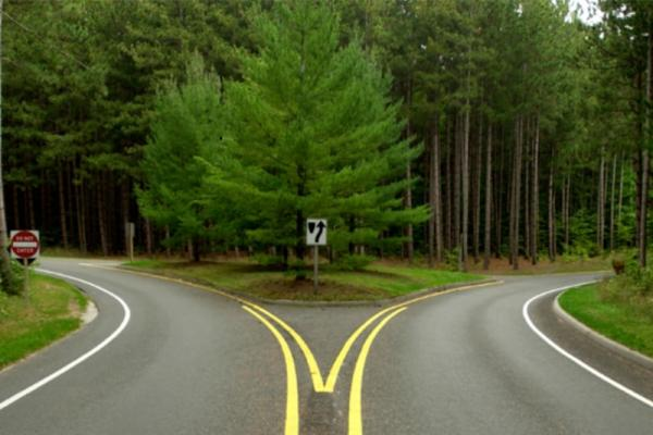 Jan 2016 Parent Connection - Fork in the Road